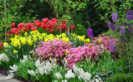 NY Botanical Garden is in full bloom.