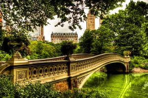 Bow Bridge in Central Park.