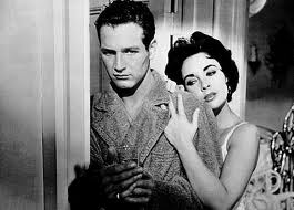 """Newman & Taylor Cat on a Hot Tin Roof"""